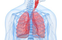 Image depicting Lung Health Program